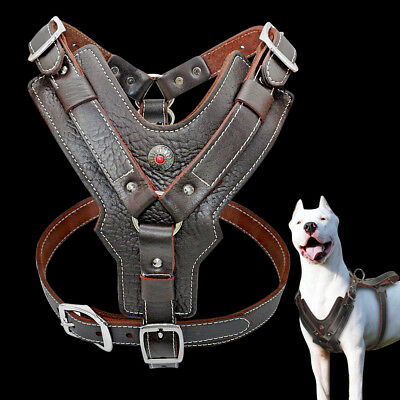 Genuine Leather Dog Harness Large Breed & Handle Heavy Duty Rottweiler Pitbull