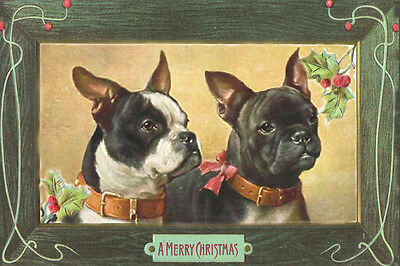 Boston Terrier & French Bulldog by Carl Reichet LARGE New Christmas Note Cards