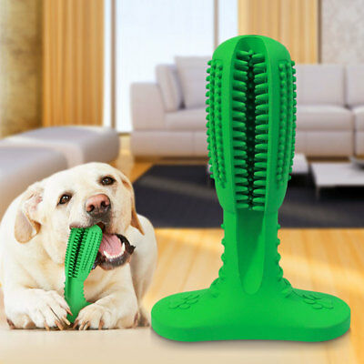 Bristly Brushing Stick Most Effective Toothbrush for Dogs Pets Oral Care