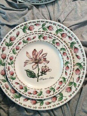 Tabletops Unlimited BOTANICAL GARDENS Magnolia  Dinner Plate And Salad Plate Set