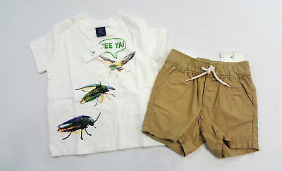 NWT Baby Gap Boys Size 12 18 Months Bugs Insect Shirt & Khaki Pull On Shorts