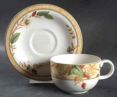 Royal Doulton EDENFIELD Cup & Saucer 1357466