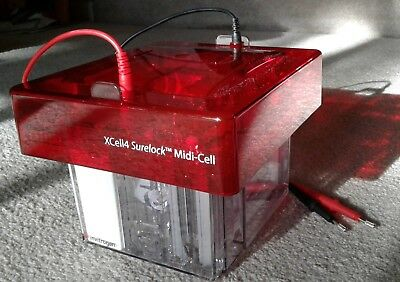 XCell4 SureLock™ Midi-Cell Complete Electrophoresis Kit