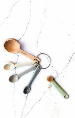 NEW Zeal Classic Measuring Spoon Set of 5
