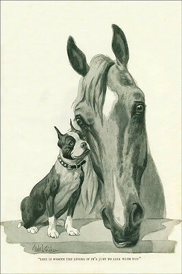 Boston Terrier Dog & Horse by Robert Dickey 1920's - New  Large Note Cards