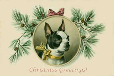 Vintage Boston Terrier Dog unknown artist -  LARGE New Christmas Note Cards