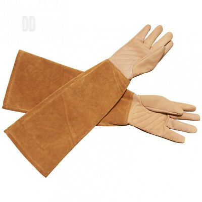 Goatskin Leather Thorn Proof Puncture Resistant Bramble Gloves, Heavy Duty...