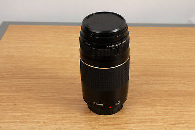 Canon EF 75-300mm f/4-5.6 III Telephoto Zoom Lens Canon Digital SLR Camera