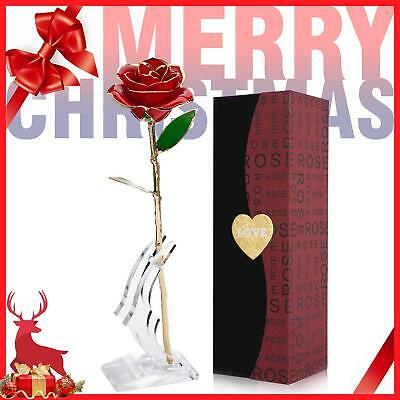 l Rose Flower Long Stem with Transparent Stand, Best Gift for Valentine Day love