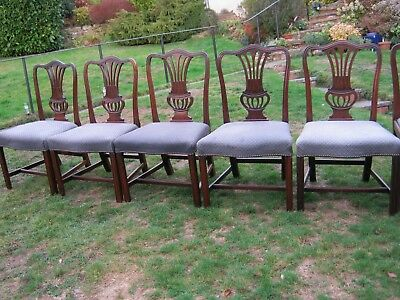 Georgian Hepplewhite Mahogany Hump Back Dining Chairs - Set of 5 + 2