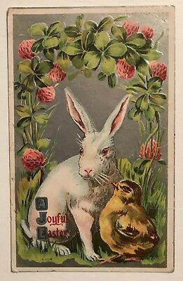 Bunny Rabbit with Chick & Clovers Flowers Antique Embossed Easter Postcard-a281