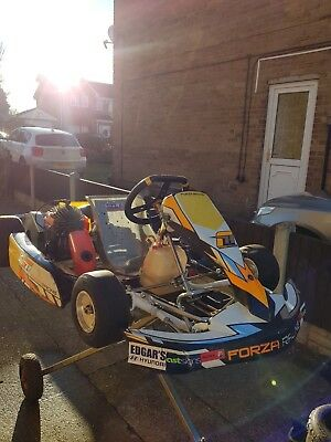 Super Cadet Kart Suit 7-12 Year Old Great Kart 2 Stroke Engine Electric Start