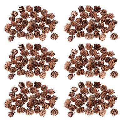 180 Pcs Mini Natural Dried Pine Cones for Christmas Tree Hanging Decoration