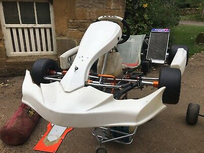 125CC IAME X30 Racing GoKart by Robert Kubica & Birel Art