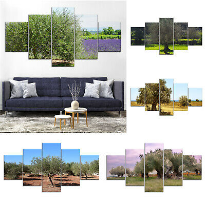 Olive Tree Canvas Print Painting Framed Home Decor Wall Art Poster 5P