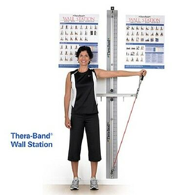 NEW Thera-Band Professional Exercise Rehab Wall Station