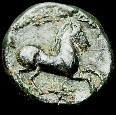 a8: Unidentified Ancient Greek Bronze Coin - Bust right, Horse right.  200 BC