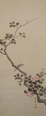#1099 Japanese Hanging Scroll: Warbler and Camellia Sasanqua