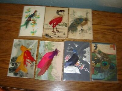 VINTAGE NOVELTY POSTCARDS real  feathers birds large lot of 8
