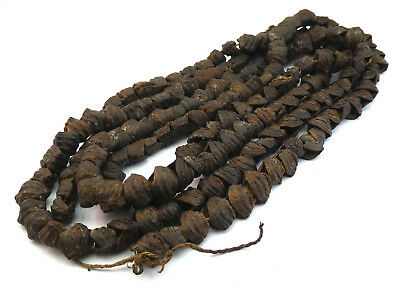 Papua New Guinea, Sepik, Ceremonial Extra Long Seed Pod Nut Necklace