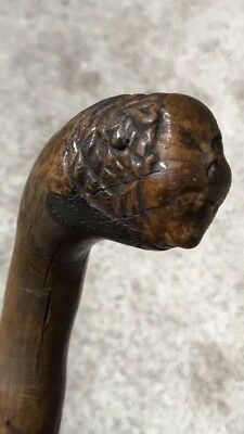 Authentic Native American Iroquois Carved Burlwood Human Head Club, Staff, Cane