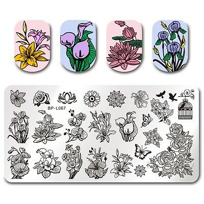 2* BORN PRETTY Nail Art Stamp Plate Rectangle Manicure Image Template Flower