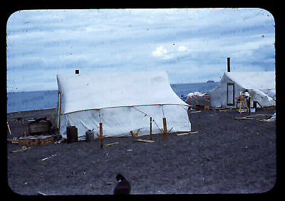 (104) Vintage 1950s 35mm Slide Photo - BARROW AK - Eskimo Camp, Cape Smythe