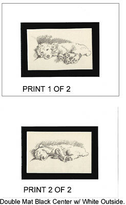 TWO Vintage Poodle Dog Sketch Print (s) by Lucy Dawson 1940 WHITE Mats 8X10