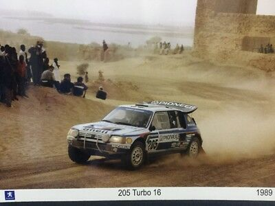 Superbe Photo Originale 1989 Peugeot Sport 205 TURBO 16 Rallye