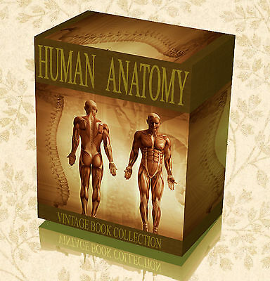 300 Old Human Anatomy Books on DVD - Grays Surgical Medical Body Organs Art 31