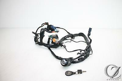 98-03 HARLEY XL1200 XL 1200 SPORTSTER Main Wire Harness Loom