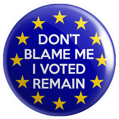 Don't Blame Me I Voted Remain BUTTON PIN BADGE 25mm 1 INCH Brexit EU Referendum