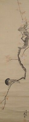 #1129 Japanese Hanging Scroll: Bird on Cherry Tree