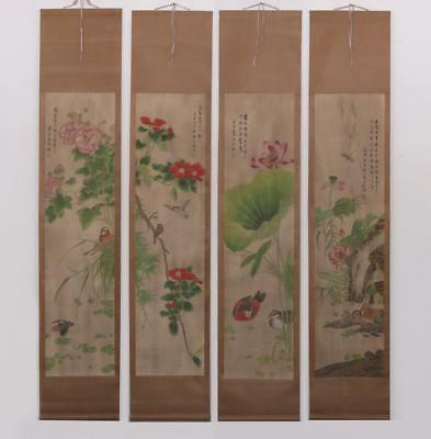 Very Rare Four Chinese Hand Painting Scroll Ma Jiatong Marked (449)