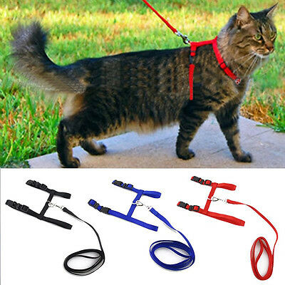 Cute Cat Puppy Adjustable Harness Collar Nylon Leash Lead Safety Walking Rope