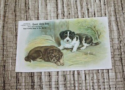 Vintage Queen Anne Soap Puppies Victorian Trade Card