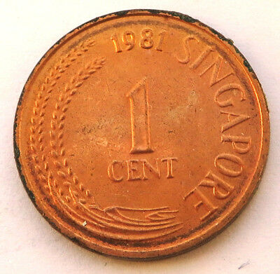 Singapore Cent 1981 Copper Clad Steel KM#1a  UNC
