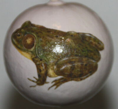 gourd Easter egg, garden or Christmas ornament with frog, toad