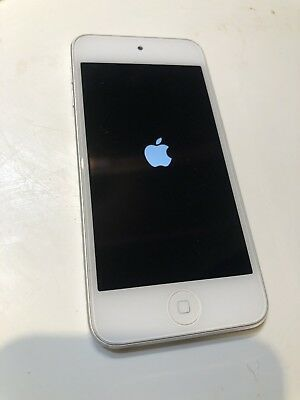 Apple iPod touch 5th Generation (Late 2012) Silver (32GB) - Very good Condition