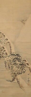 #0984 Japanese Hanging Scroll: Pine Tree in the Snow