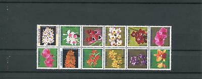 Suriname Mnh 2011 Flowers Orchids 2092