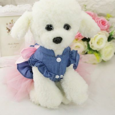 Pet Small Dog Cat Princess Lace Dress Lace Skirt Female Puppy Costume Clothes US