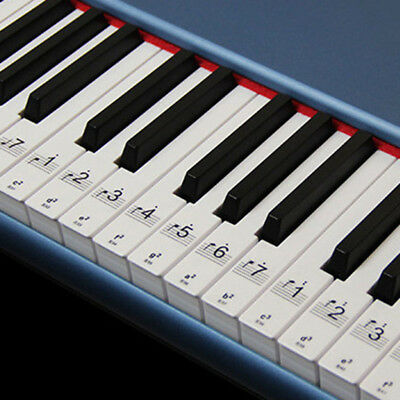 1x88Keys Keyboard Or Piano Laminated Removable Sticker Set Kit Educational Toys