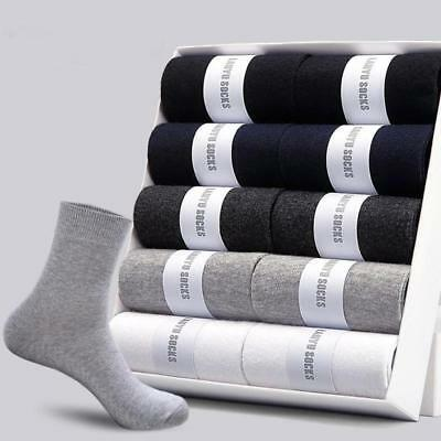 Socks Casual 10 Pairs Cotton Spandex Autumn Winter