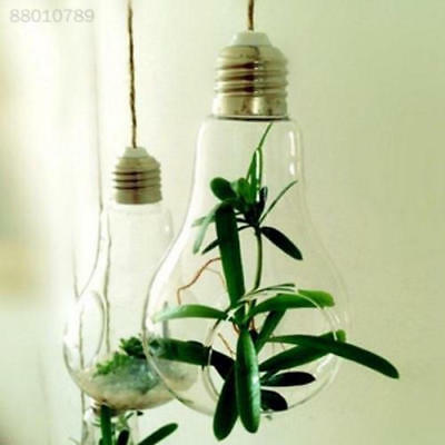 C3A6 Diy Flower Pot Perfect Gift for Family Vase Glass Hanging Bulb Plant