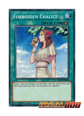 YUGIOH x 3 Forbidden Chalice - SDPL-EN024 - Common - 1st Edition Near Mint