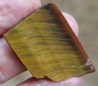Rough South African 43.24 ct Tiger Eye.