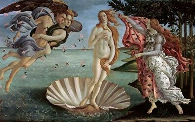 FINE-ART-PRINT-Botticelli--Sandro-The-Birth-of-Venus-Poster-Paper-or-Canvas-for-