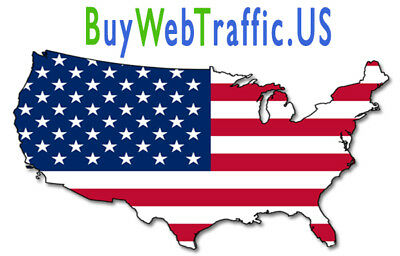 Over 20,000 Real Website Traffic From USA To Boost Your Website Views