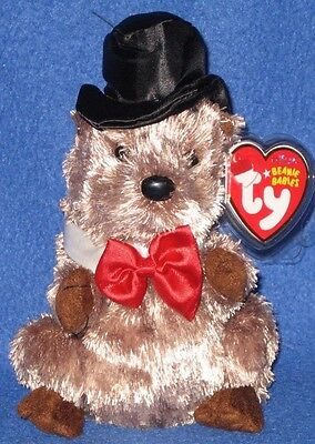 Ty Punxsutawney Phil 2008 Groundhog Beanie Baby - Mint Tags - Coc Pa  Exclusive a62c210403e3